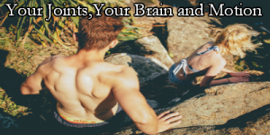 Your JointsYour Brain and motion
